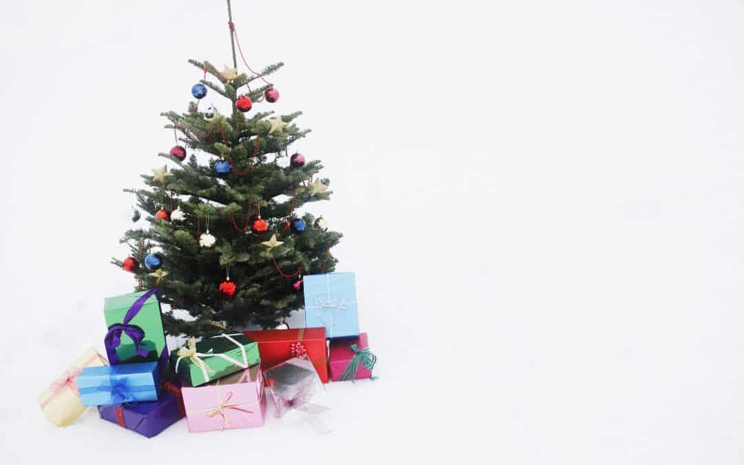Top 5 Best Christmas Tree Storage Bags (That Work!)