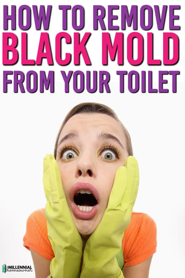 How to get rid of black mold in your toilet