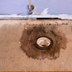 water damage plywood subfloor