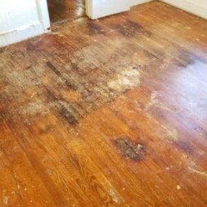 water damage wood floor