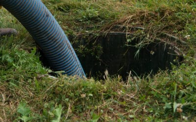 Is My Septic Tank Full? (5 Easy Ways to Tell)