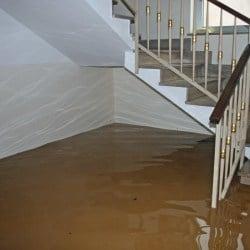 Wet Carpet in Flooded Basement