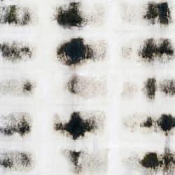 Black mold spores