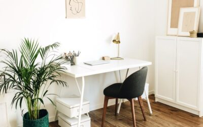 30+ Work From Home Office Essentials