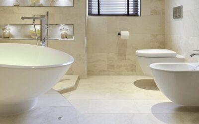 Best Bidet Toilet Combo: Top 7 Reviewed