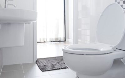 Elongated Toilet vs. Round: Everything You Need to Know