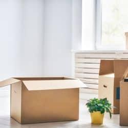 uhaul boxes free